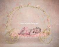 Newborn baby girl in Princess carriage
