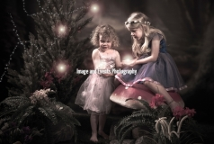 Fairy and Elf Photography 003