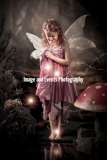 Fairy and Elf Photography 009