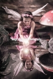 Fairy and Elf Photography 010