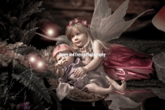 Fairy and Elf Photography 016