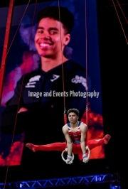 23.03.2019. Resorts World Arena, Birmingham, England. The Gymnastics World Cup 2019Jamie Lewis (GBR)  in the Mens Rings Competition