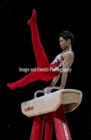 23.03.2019. Resorts World Arena, Birmingham, England. The Gymnastics World Cup 2019Kaya Kazuma in the Mens Pommel
