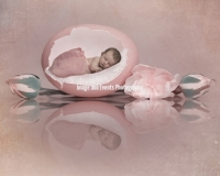 eggs-hatched-open-master-edit-3-with-texture-low-res